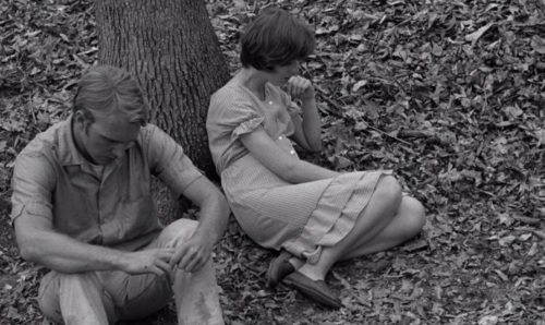 Carl and Jessie in Spring Night Summer Night 1967